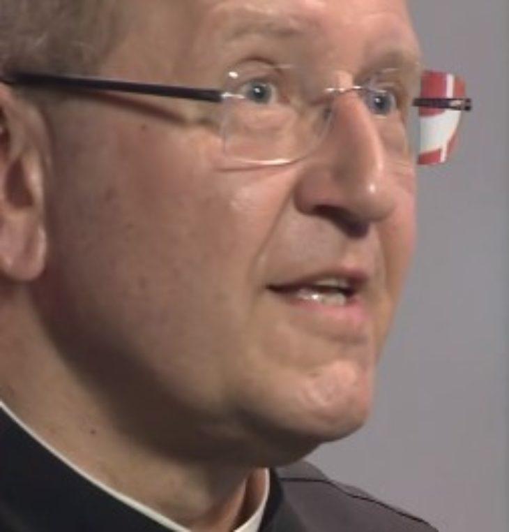 Der Heilige Geist – Sprudelnder Lebensquell für den Christen <br> P. Dr. Karl Wallner DVD